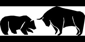 bear-157863_1280