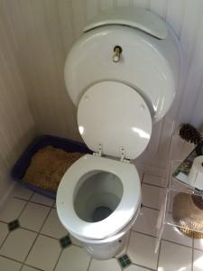 toilet-513045_1280